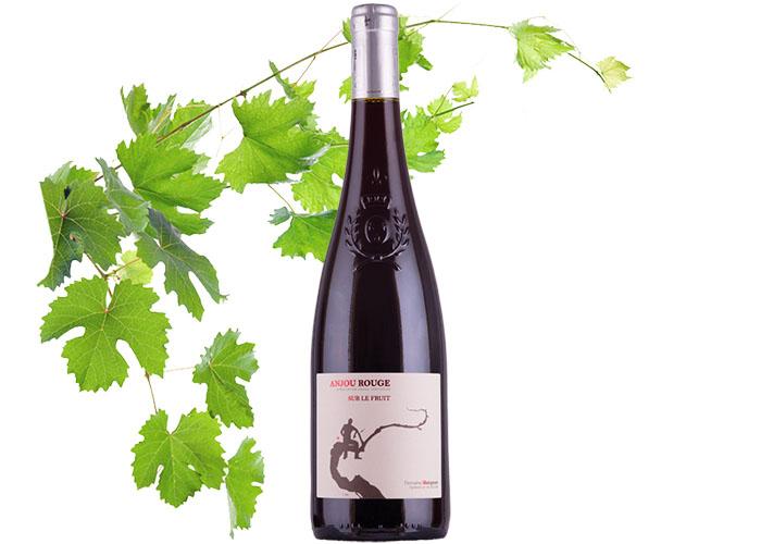 Vin Rouge Appellation Anjou